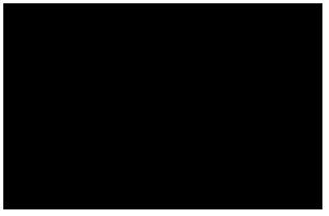 Cà Selvetta Logo
